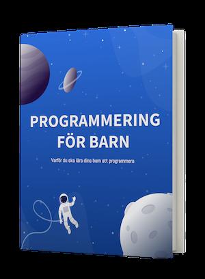Unga Programmerare e-bok